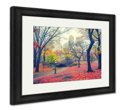 Framed Print - Autumn in Central Park