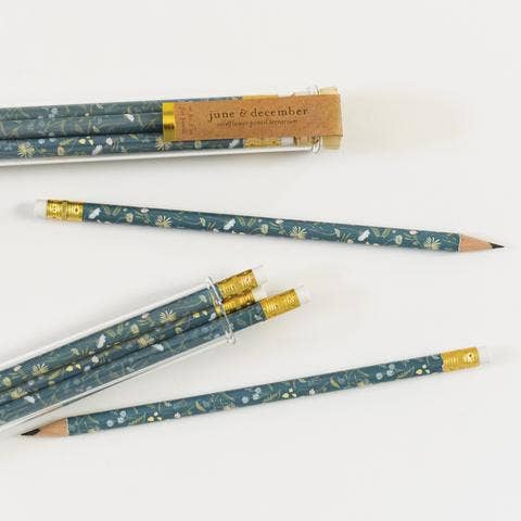 June & December - Wildflower Pencil Terrarium, Set Of 5 Pencils