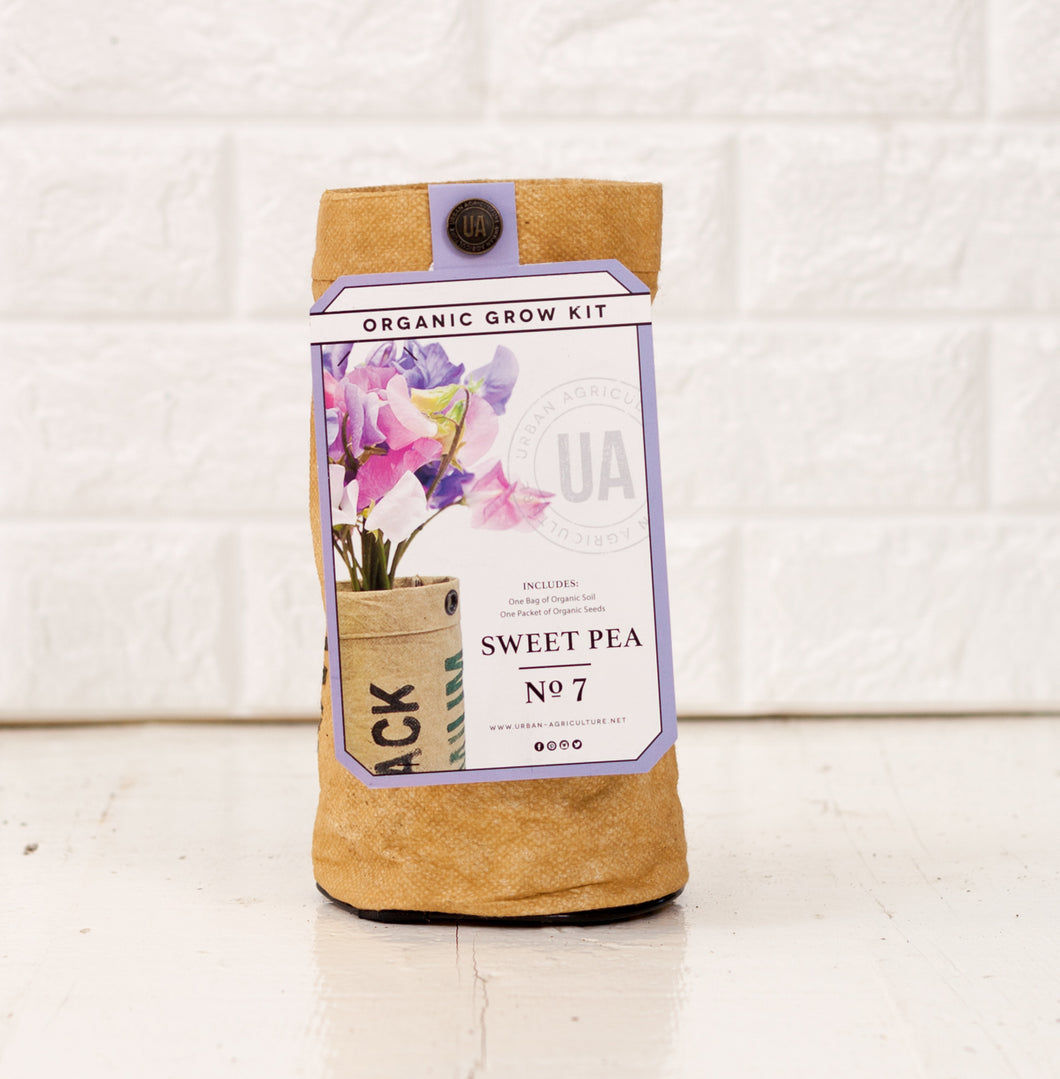 Sweet Pea Grow Kit