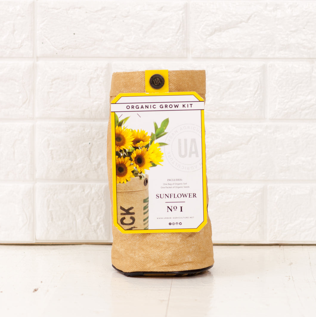 Sunflowers Grow Kit