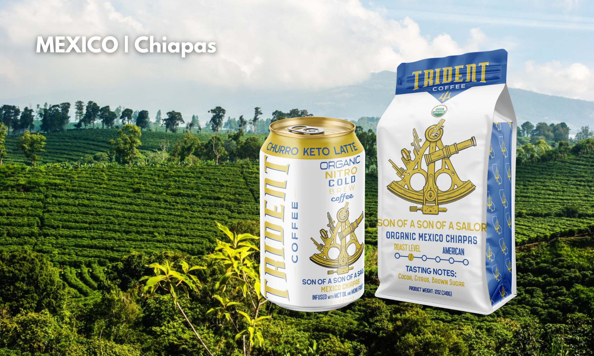 son of a son of a sailor - roasted coffee - cold brew - trident coffee - coffee farm