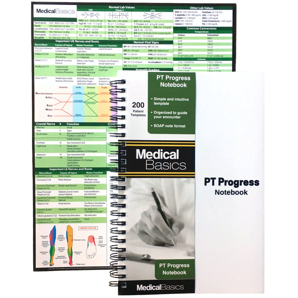 PT Progress Notebook - Physical Therapy Journal in Progress Note SOAP Format