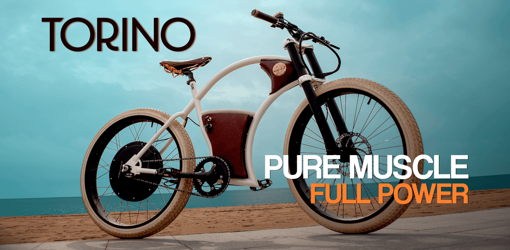 rayvolt torino electric bike marketing image from really good ebikes