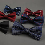 Polyester Men Bow Tie Classic Dot Solid