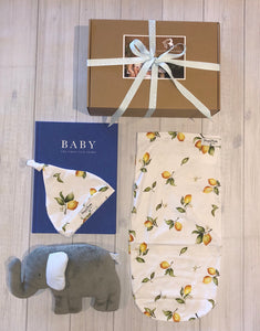 Baby Elephant Swaddle Gift Set