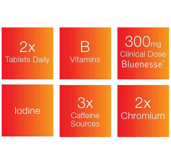 HYDROXYBURN CLINICAL 60 TABLETS | MVMNT LMTD | AUSTRALIA