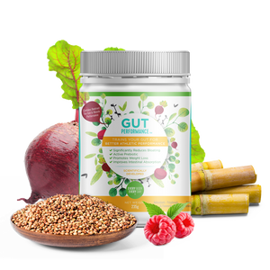 Gut Performance | 1 Month Supply