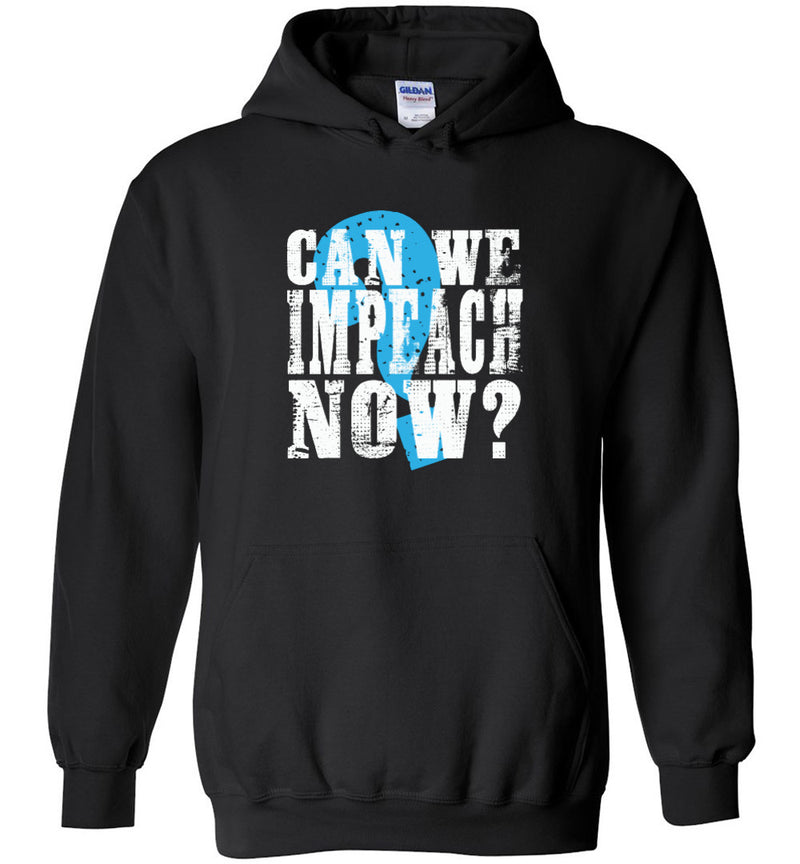 Can We Impeach Now? / Hoodie