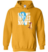 Can We Impeach Now? Resistance Kitty / Hoodie