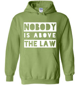 Nobody Is Above The Law / Hoodie