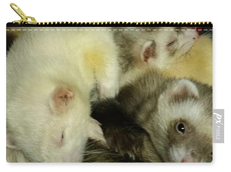 Ferret Pile - Carry-All Pouch