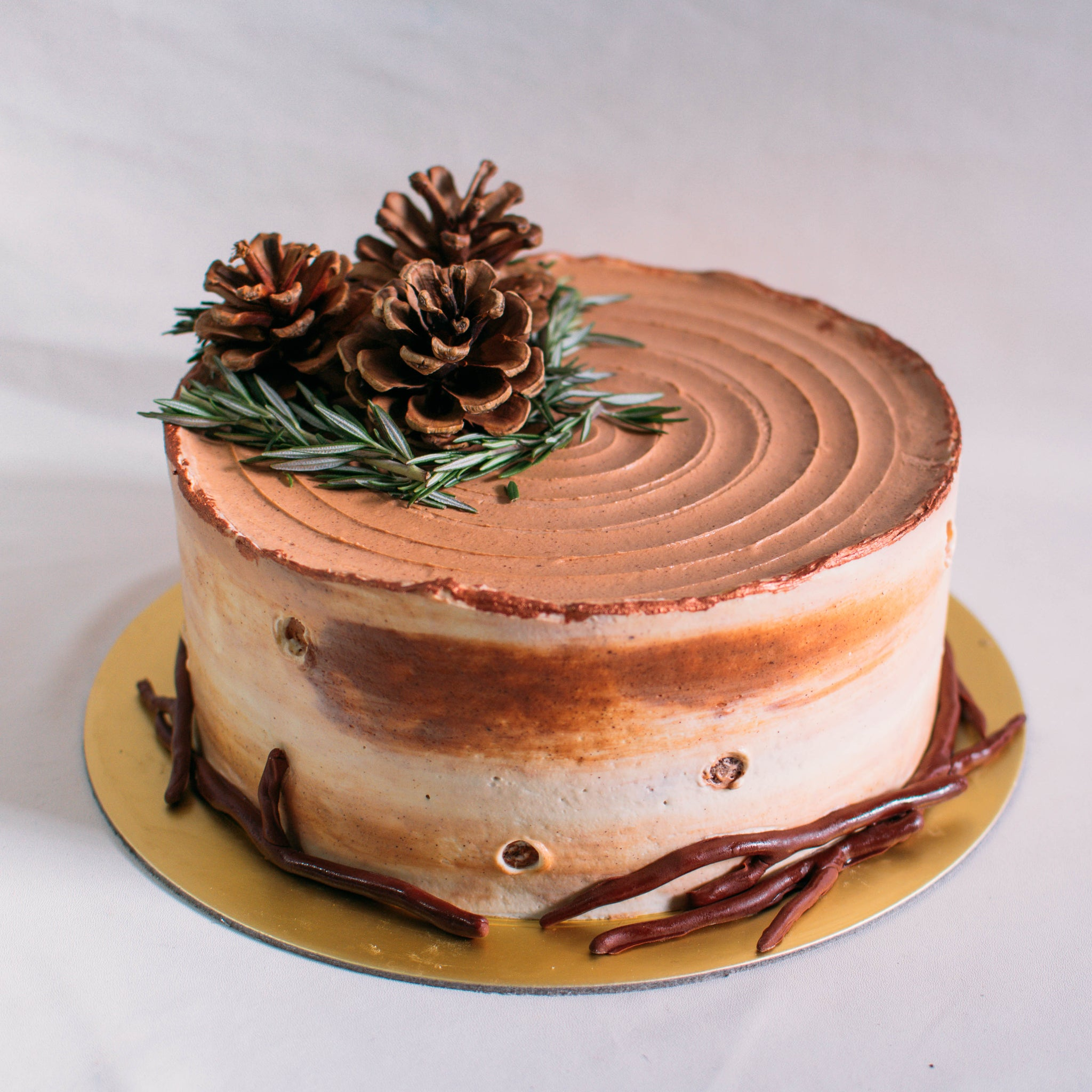 Rustic Birch and Pine Cone Cake - Custom Bakes by Edith Patisserie