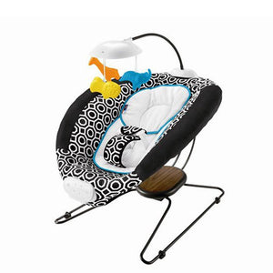 Fisher Price Jonathan Adler Deluxe Bouncer Seat