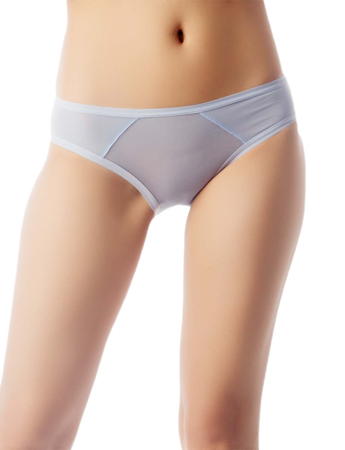 Women's Sheer See-Through Underwear Fashionable Mesh Low Rise Brief Panty, Size: M, Sky Blue