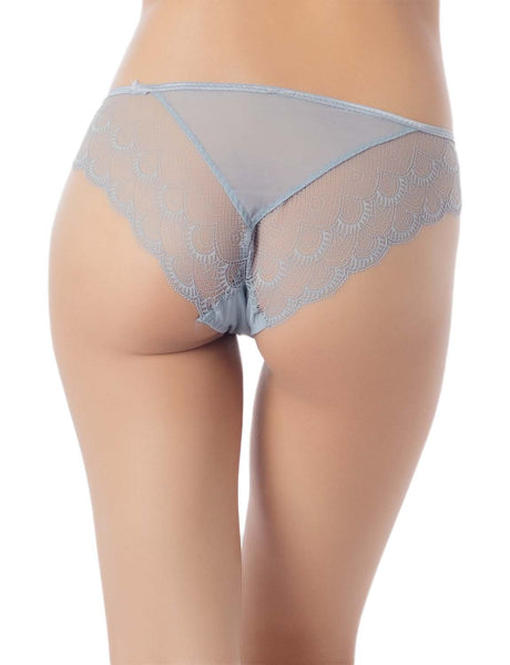 Women's Cotton Layered Lace Wings Trimmed See-Through Low Rise Brief Panty, Size: L, Light Cool Grey