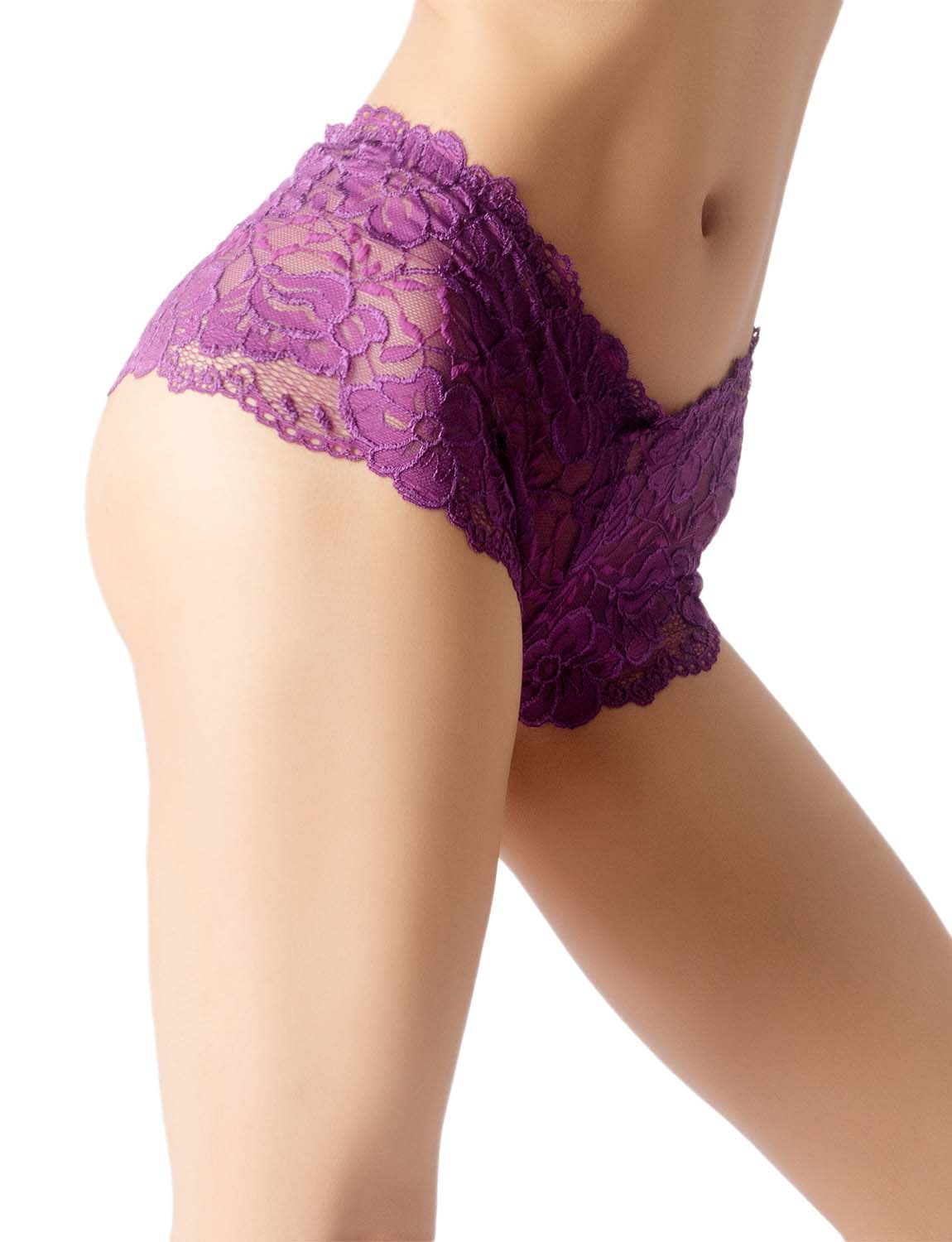 Women's Lace Mesh See-Through Breathable Underwear Low Rise Hipster Panty, Size: 2XL, Purple