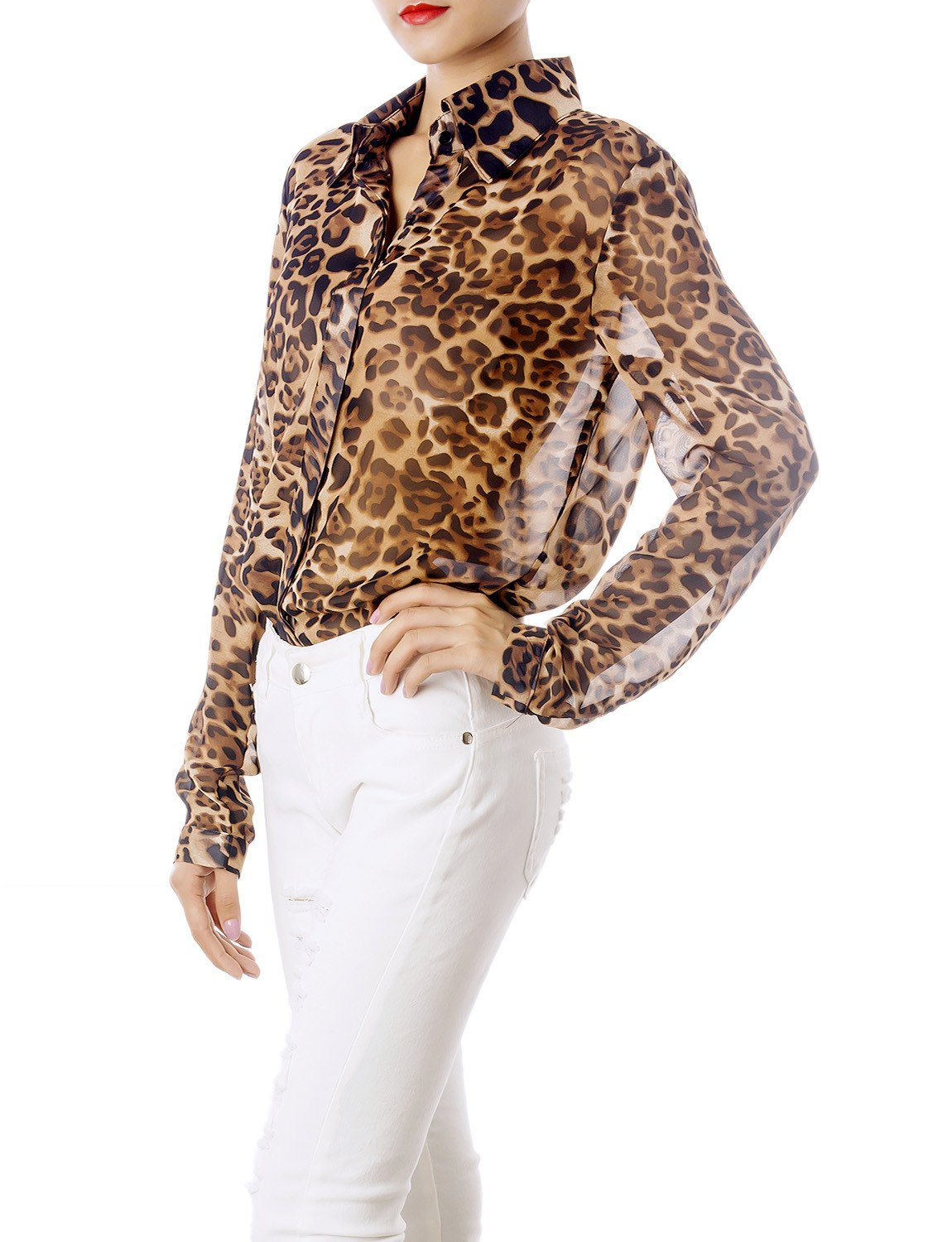 Women's Sheer Tulle Leopard Prints Long Sleeves Button Down Spread Shirt, Size: L, Brown