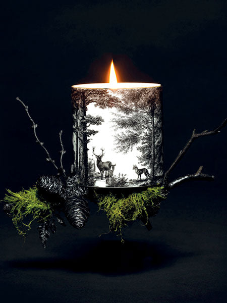 THE ENCHANTED FOREST  Evoking ancient woodland, dappled sunlight, wild fauna and the rich scent of oak filling the air.  Aromas of cedarwood, smoked oak, birch and moss