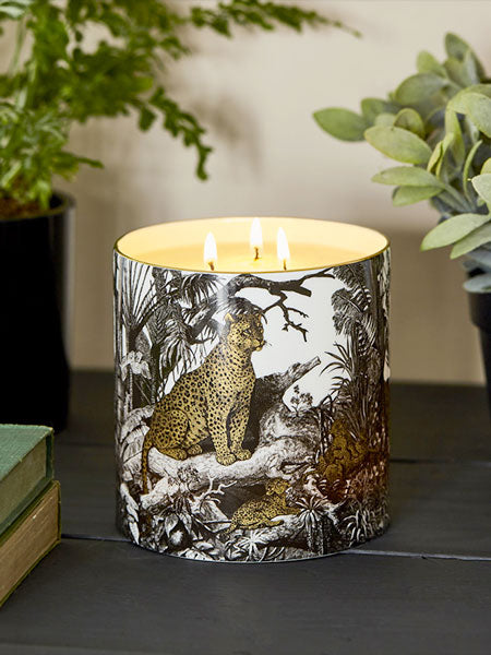 The Jungle: Evoking a wild and tropical land. Exotic flowers, foliage and birdsong fill the warm air, which rises to the towering canopy above.   Aromas of Eucalyptus, lush greens, Citrus, cedar wood and incense.