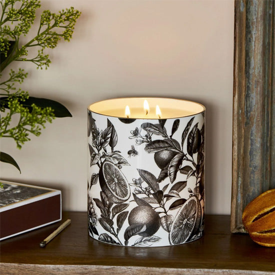 The Orangery Large 3 Wick Scented Ceramic Candle