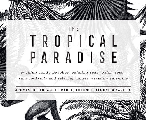 THE TROPICAL PARADISE:  Evoking sandy beaches, calming seas, palm trees, rum cocktails and relaxing under warming sunshine.  Aromas of bergamot orange, coconut, almond and vanill
