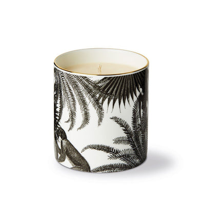 The Tropical Paradise Fine China Scented Candle - Chase and Wonder - Proudly Made in Britain
