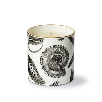 The Seashore Ceramic Candle - Chase and Wonder - Proudly Made in Britain