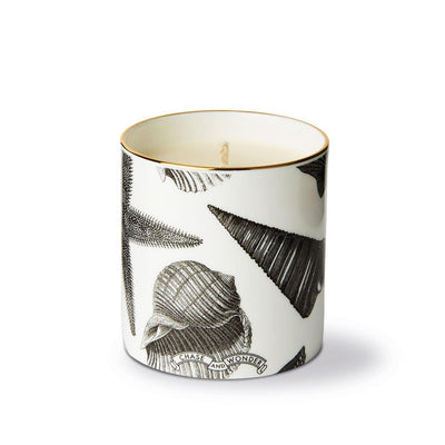 The Seashore Fine China Scented Candle - Chase and Wonder - Proudly Made in Britain