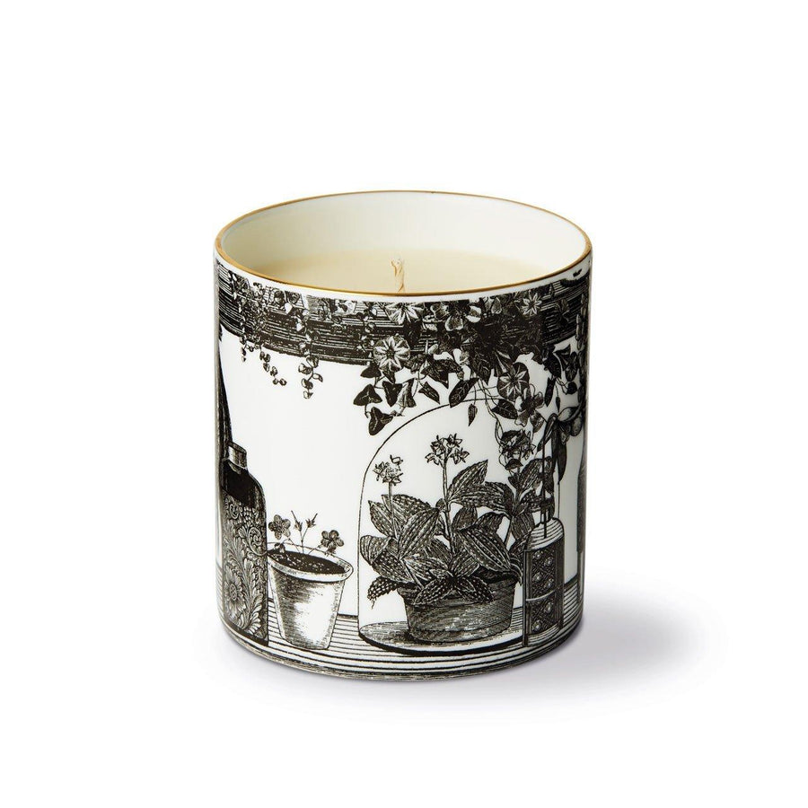 The Botanist Fine China Scented Candle - Chase and Wonder - Proudly Made in Britain