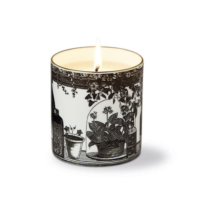 The Botanist Fine China Scented Candle