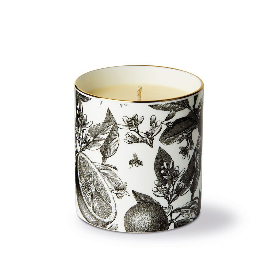 The Orangery Fine China Scented Candle