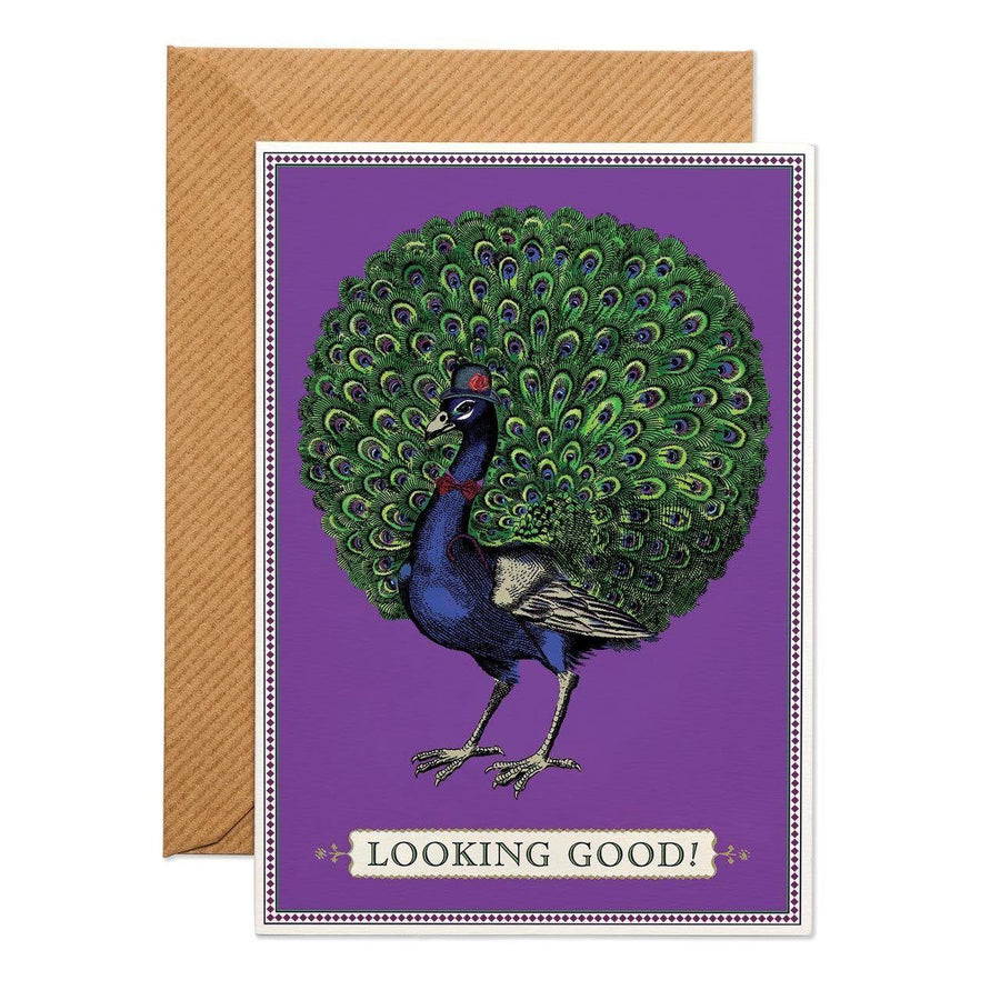 Party Peacock Greeting Card - Chase and Wonder - Proudly Made in Britain