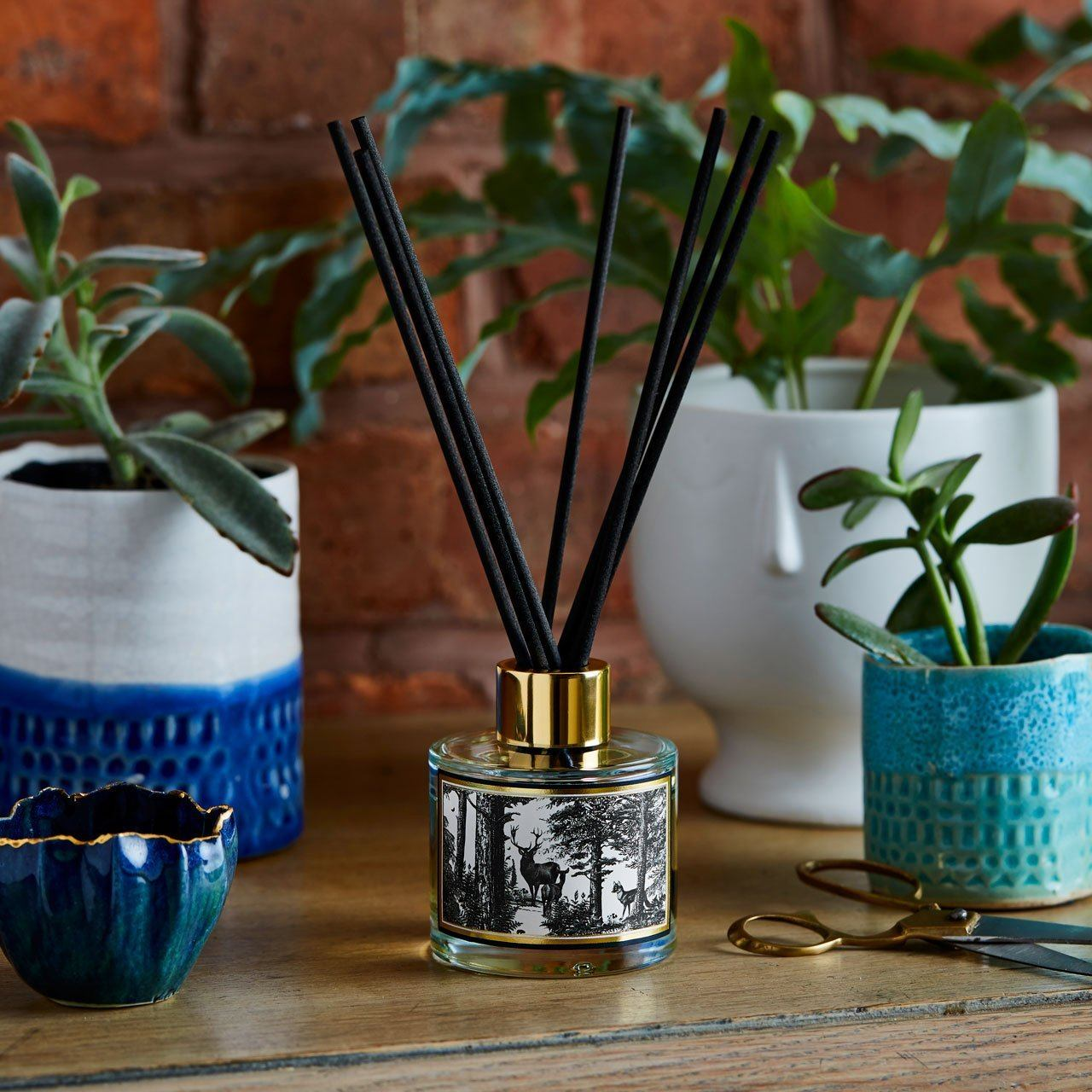 The Enchanted Forest Reed Diffuser - Chase and Wonder - Proudly Made in Britain