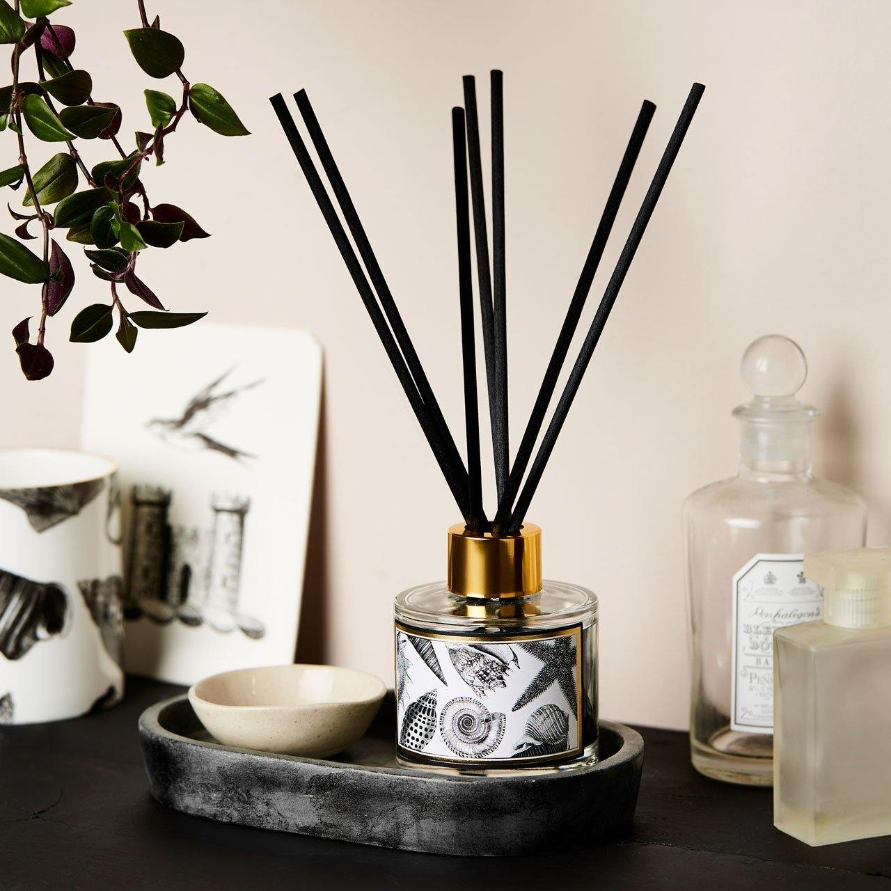 The Seashore Reed Diffuser - Chase and Wonder - Proudly Made in Britain