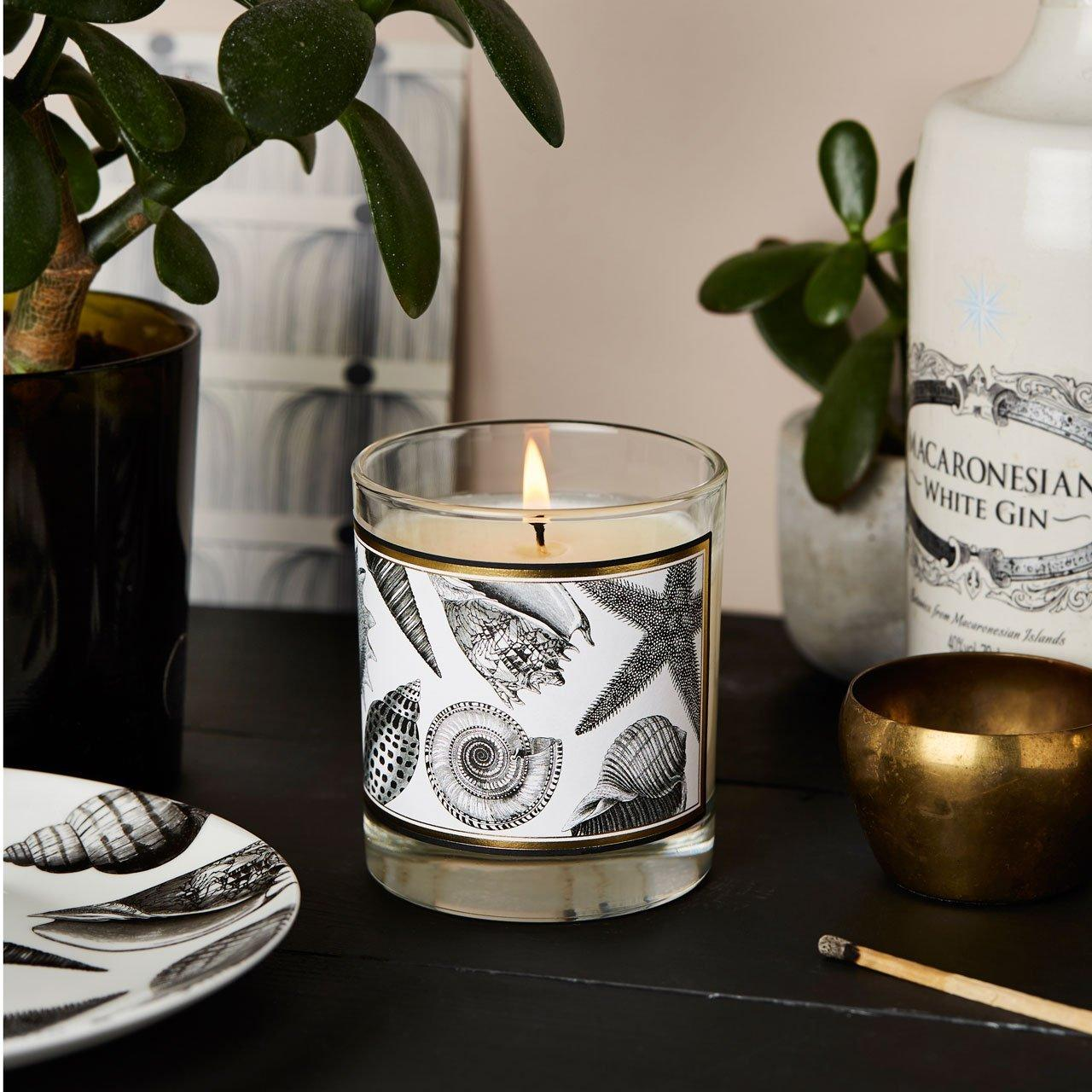 The Seashore Glass Candle - Chase and Wonder - Proudly Made in Britain