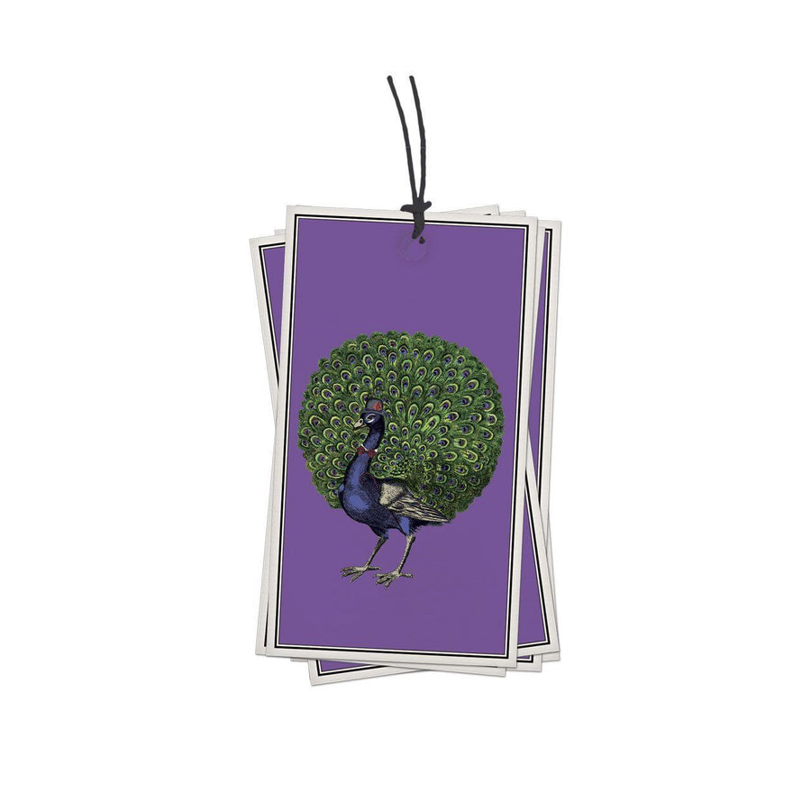 Pack of 10 Peacock Gift Tags - Chase and Wonder - Proudly Made in Britain
