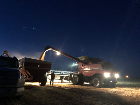 A combine unloads wheat as my brother Walt harvests into the Night on the family farm in Sidney, Nebraska