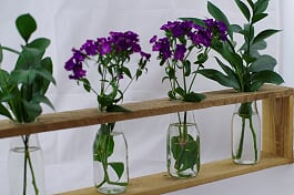 Rustic Wooden Vase Holders
