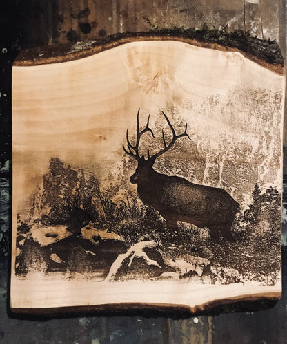 Live Edge Elk Art - Heavy Barrel Designs