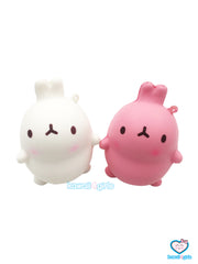 Potato Rabbits Squishies