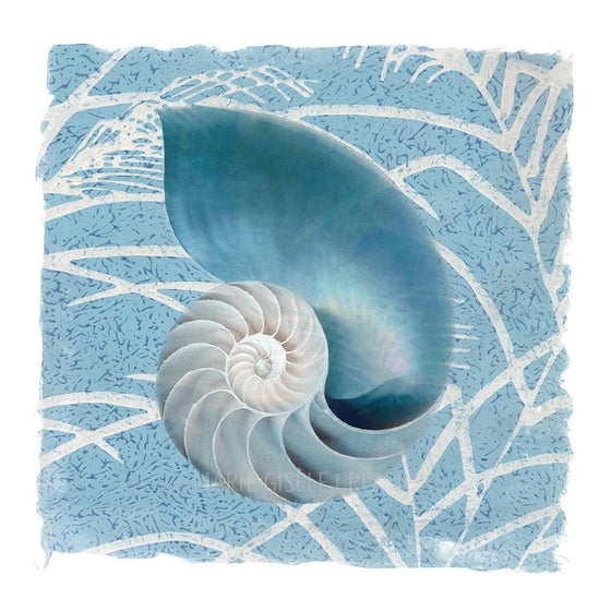 Blue Nautilus on Blue Fabric