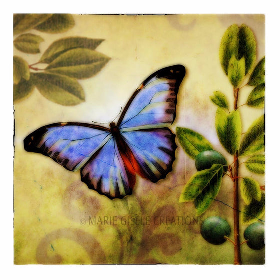 Blue Butterfly in Garden