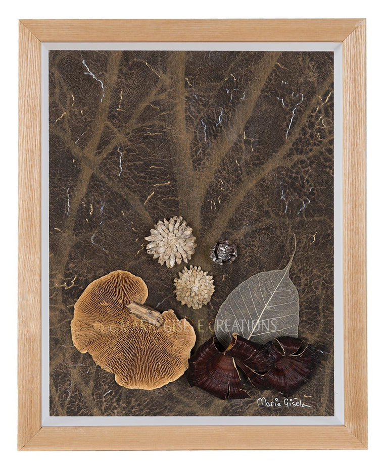 Dried Flower Collage