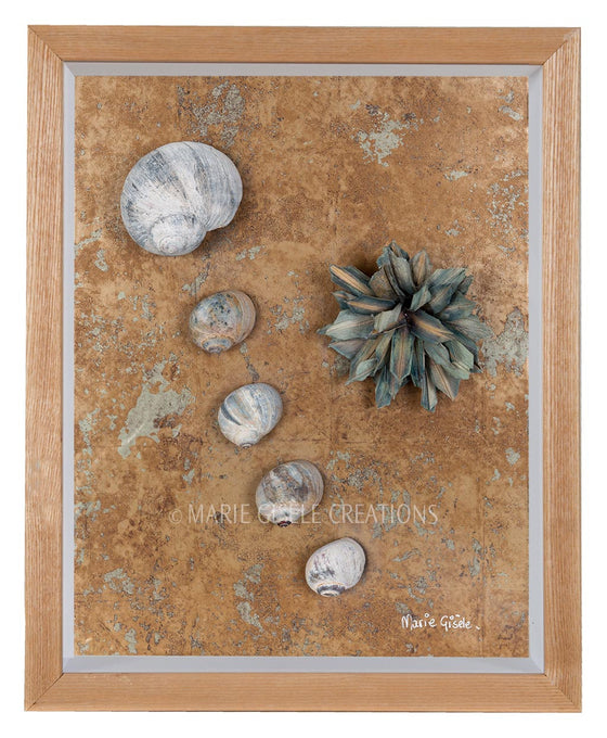 Flower and Seashell Collage