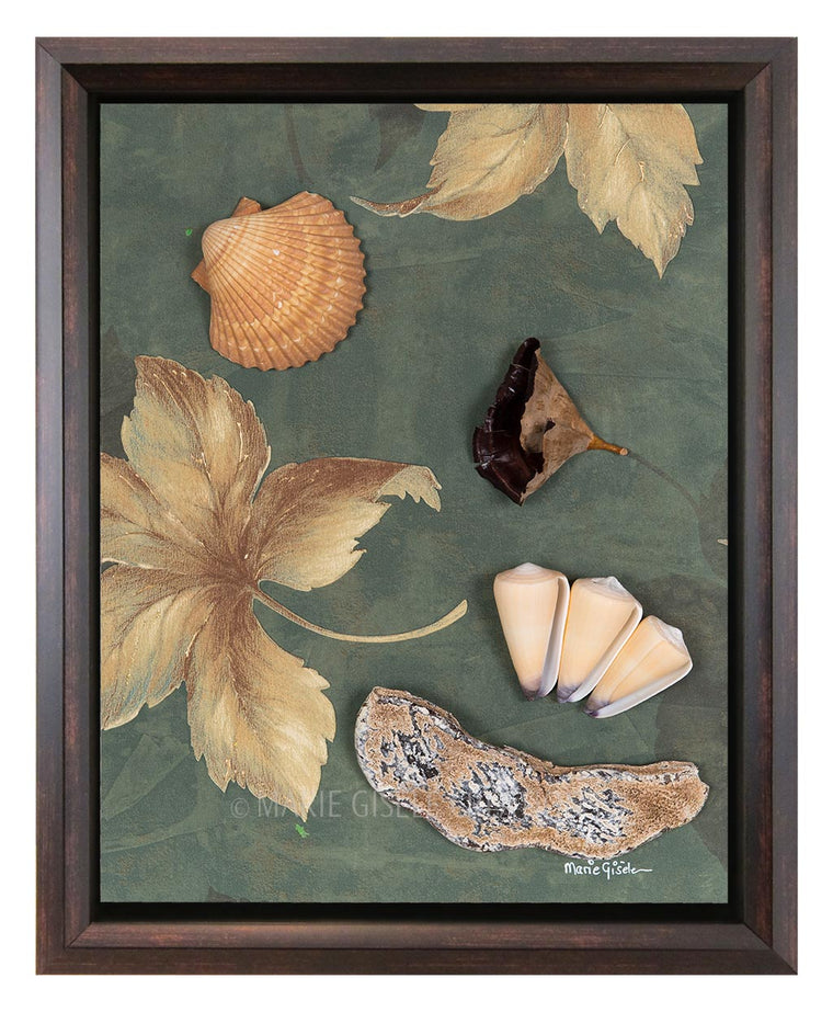 Seashell Collage