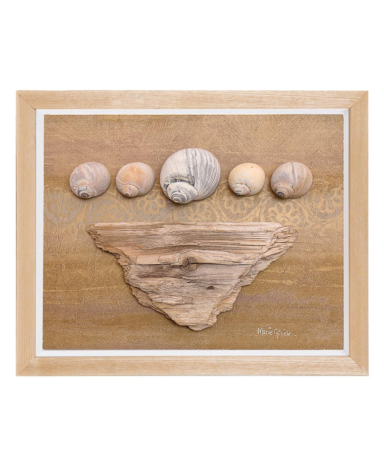 Seashells on Driftwood