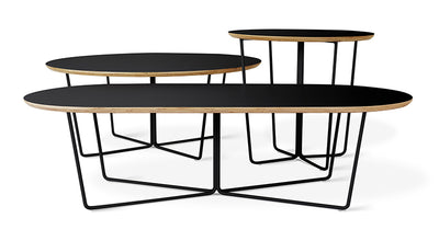 Gus* Modern Array Coffee Table - Oval - Rug & Weave