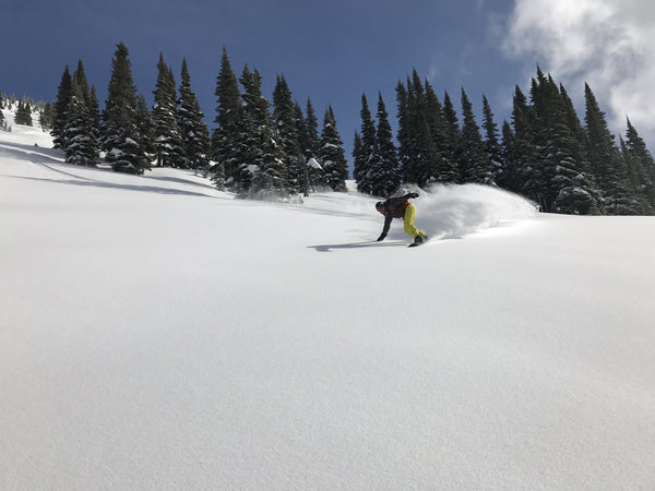 Perfect untracked powder on a sunny day near the Red Mountain cabin