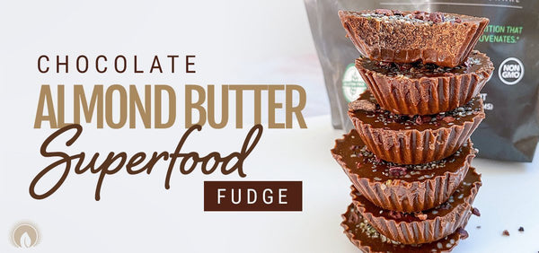 Chocolate Almond Butter Superfood Fudge