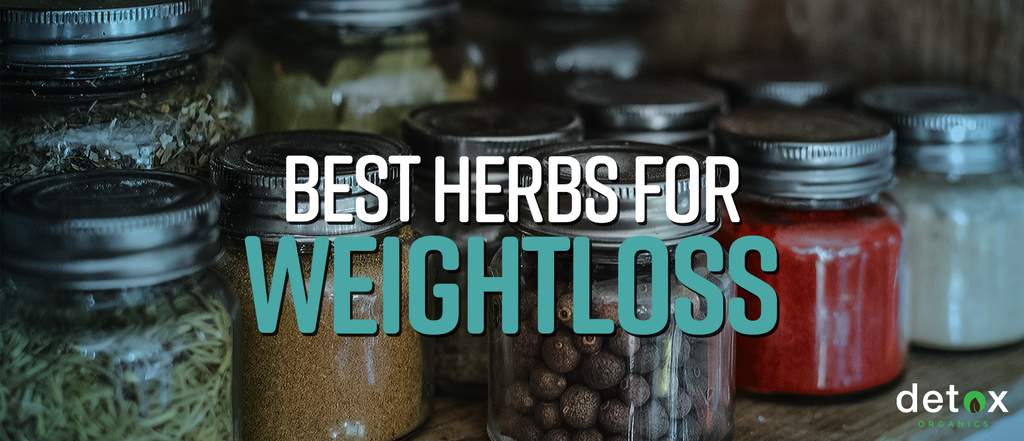 Best Herbs for Weight Loss and Detox (Anti Inflammatory Herbs and More)